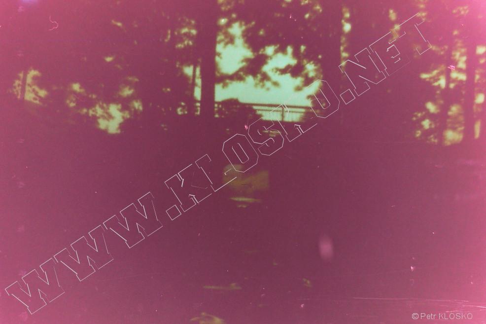 Detail - Dírková komora - fotky XIV - Most v lese
